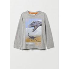 Реглан H&M с динозаврами (04778)