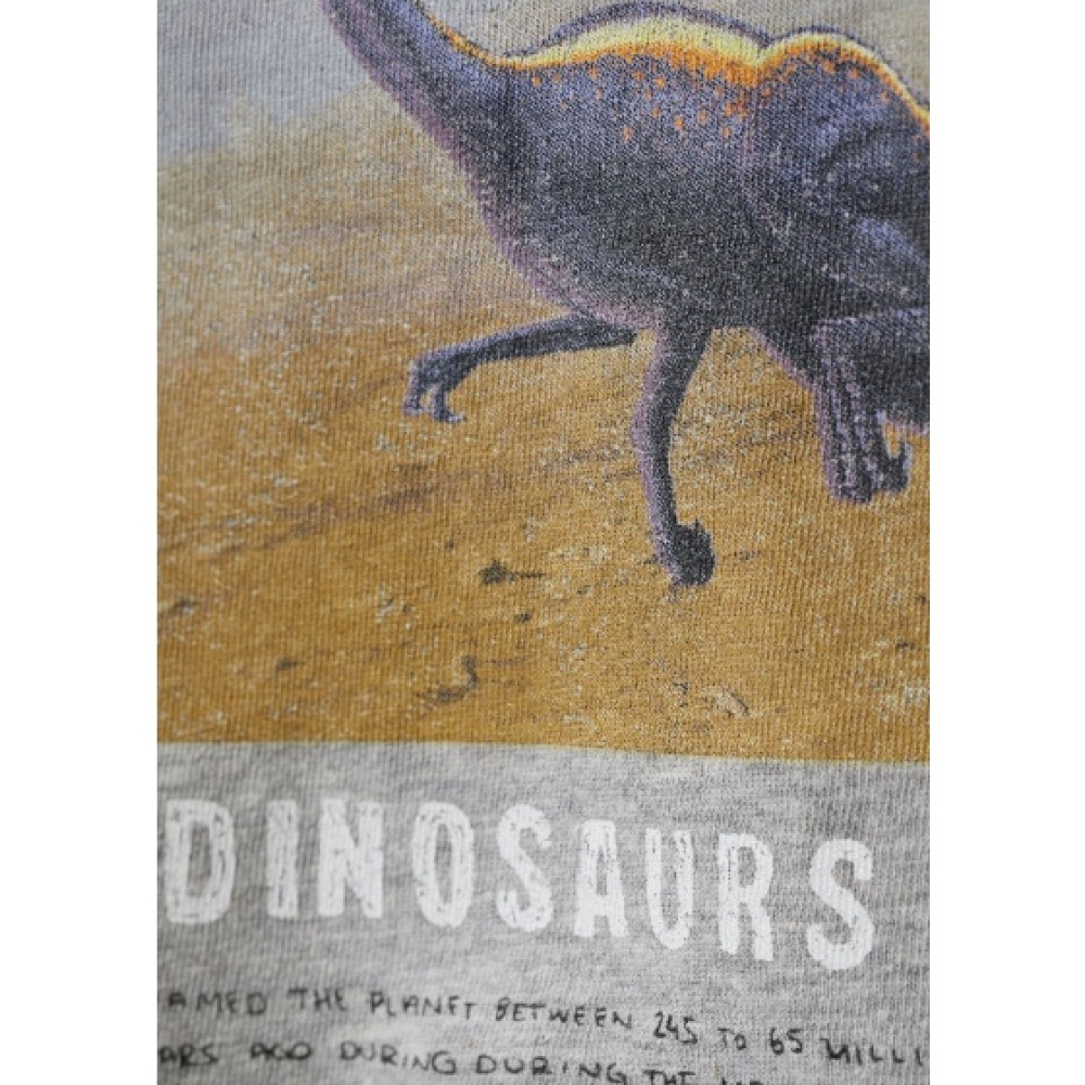 Купить Реглан H&M с динозаврами (04778) в Украине